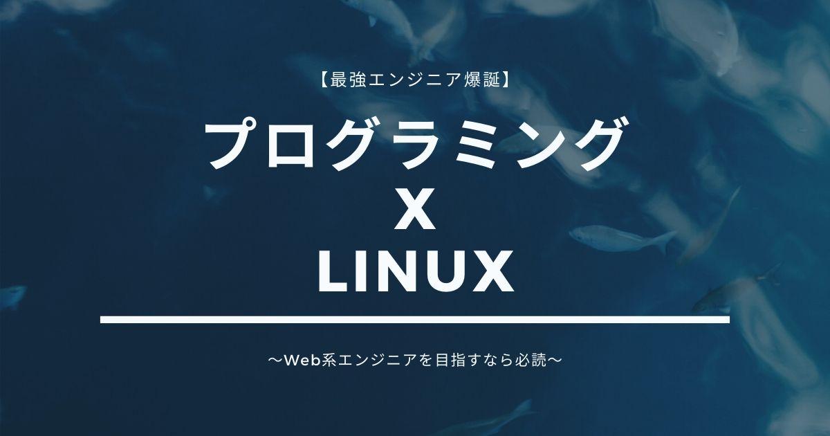 プログラミングとLinuxを合わせて勉強することをオススメ【最強エンジニア爆誕】